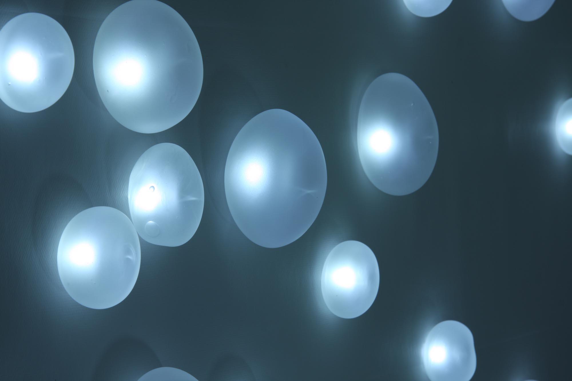 Nucléoles, pure white LEDs