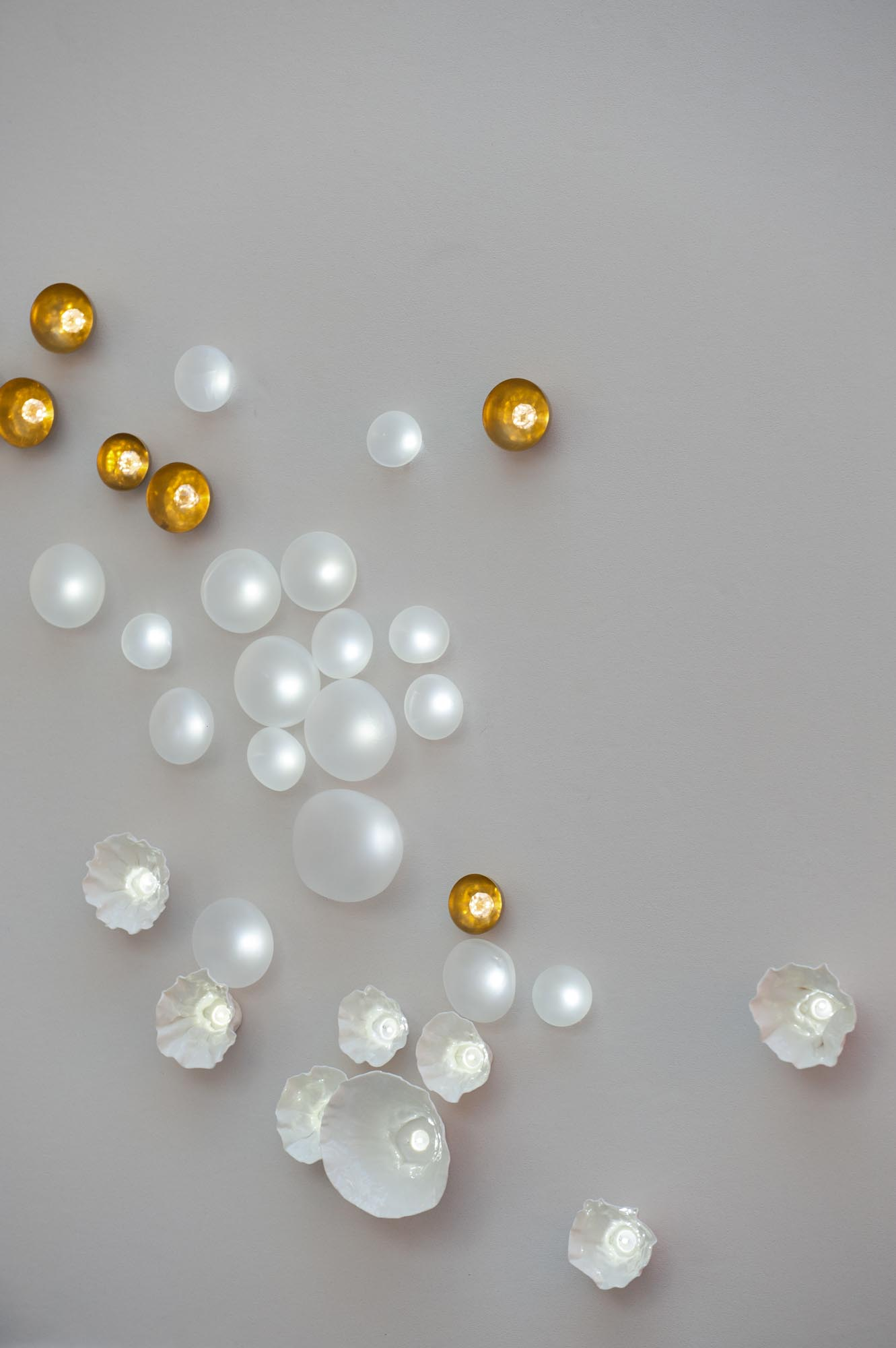 Nucléoles, pure white LEDs, with Nénuphars and Hoyas